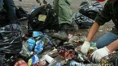 Більше 60 мішків зі сміттям прибрала печорська молодь в першотравень
