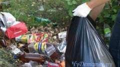 Для прибирання міста від сміття мер сиктивкара запропонував додатково найняти сто двірників
