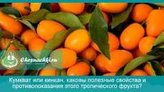 Кумкват або кинкан, які корисні властивості і протипоказання цього тропічного фрукта?